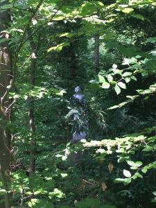 statue hidden between trees