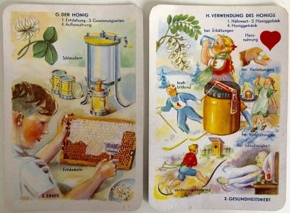 Harvesting Honey & uses of Honey