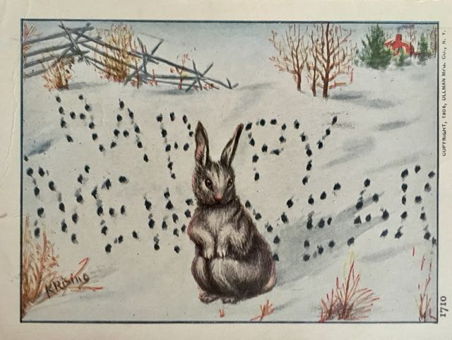 bunny in snow with black pawprints spelling out 'Happy New Year'