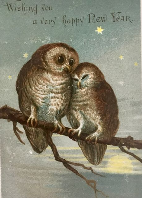 vintage postcard: Wishing you a very happy New year, showing 2 owls on a branch leaning against each other
